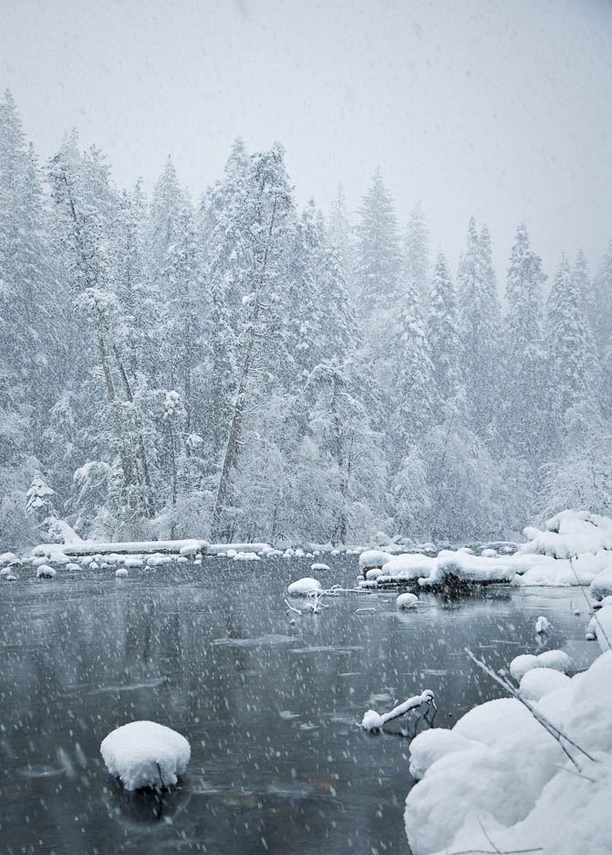 Winter in Yosemite, #320
